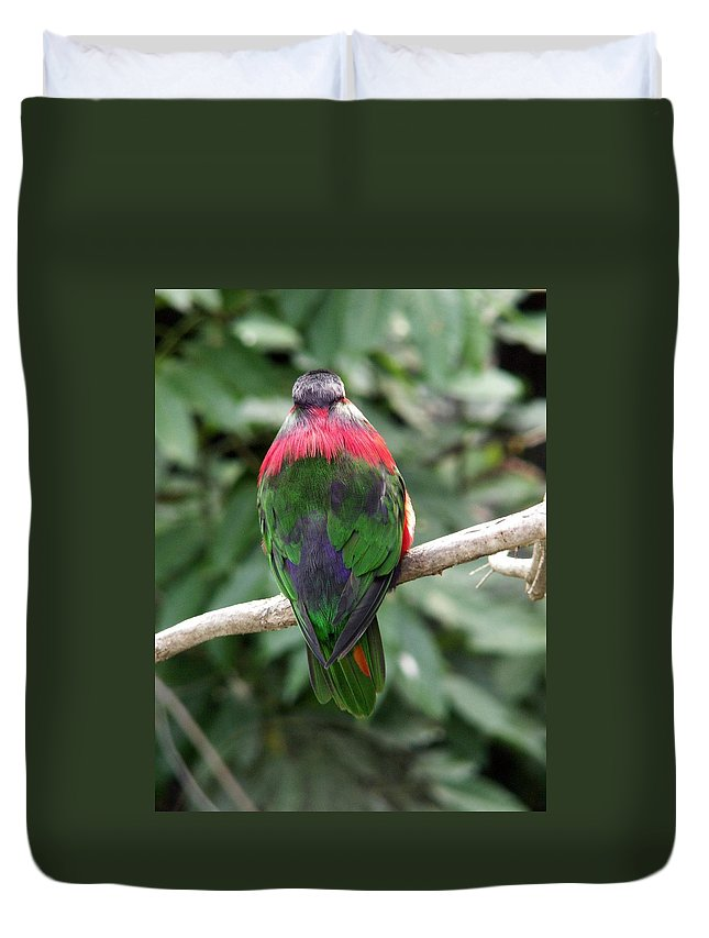 Bird Duvet Cover featuring the photograph A Bird's Perspective by Amy Fose