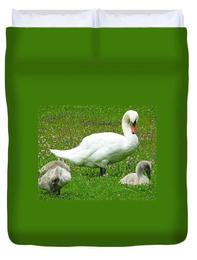 Caring Duvet Cover featuring the photograph A Caring Mother by Daniel Csoka