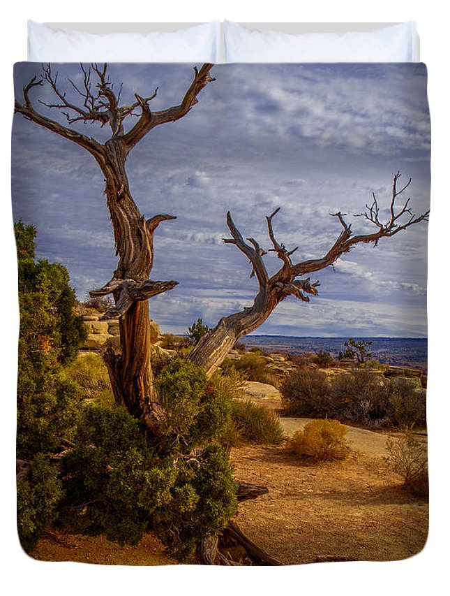 South-west Duvet Cover featuring the photograph A Change Of Light by Tim Bryan