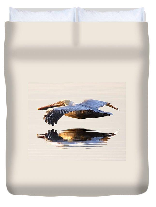 Brown Pelican Duvet Covers
