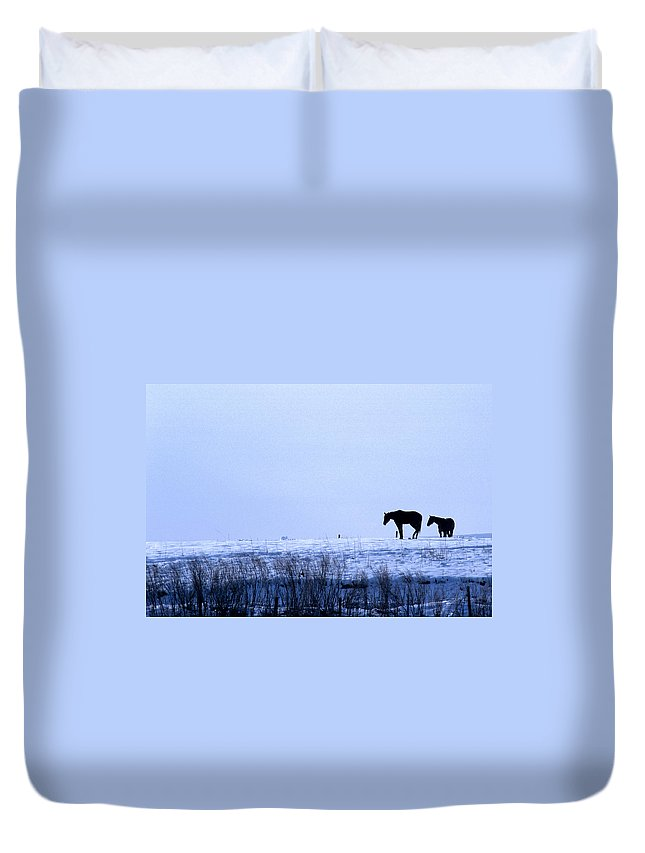 Horses Duvet Cover featuring the photograph A Cold Winter by Jerry McElroy