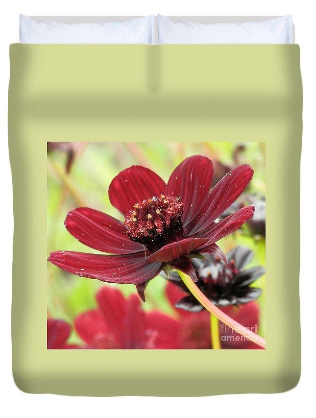 Gardens Duvet Cover featuring the photograph A Deeper Hue by L Cecka