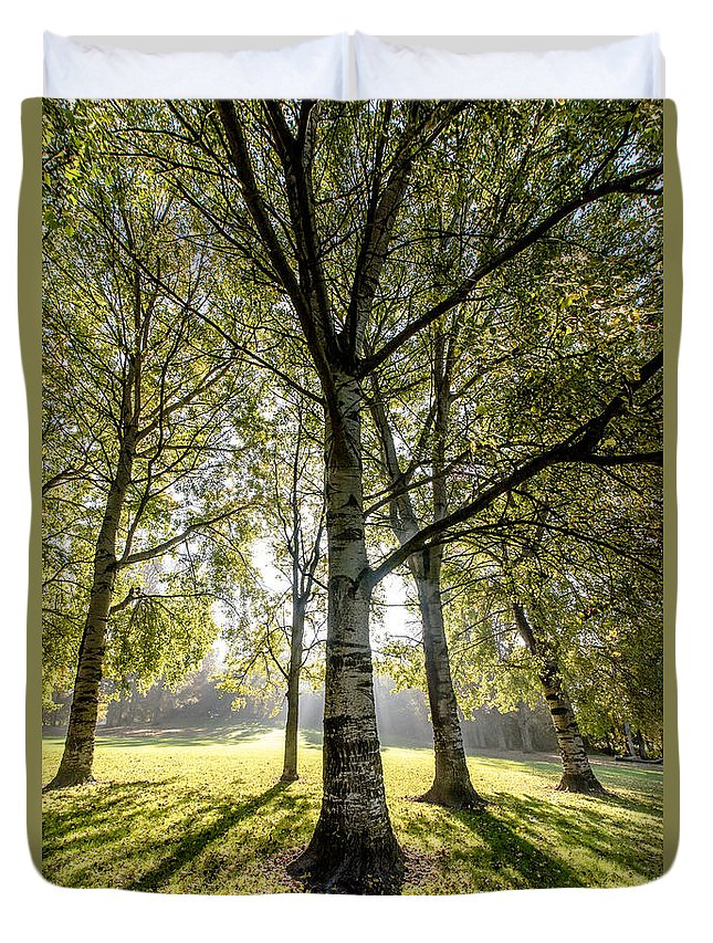 Forest Duvet Cover featuring the photograph a Forest part 1 by Alex Hiemstra