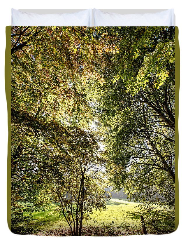 Forest Duvet Cover featuring the photograph a Forest part 2 by Alex Hiemstra