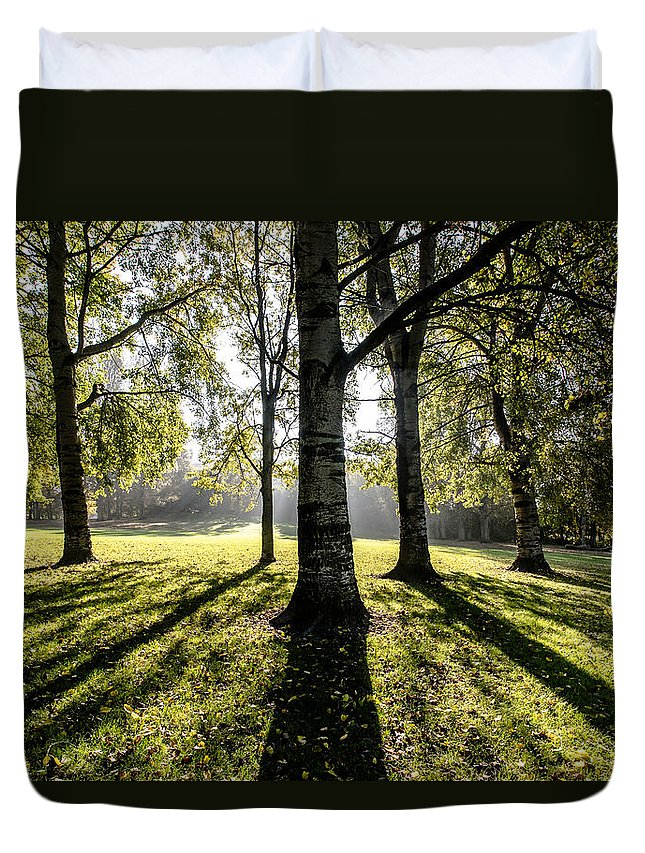 Forest Duvet Cover featuring the photograph a Forest part 3 by Alex Hiemstra