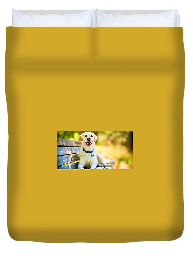Dogs Duvet Cover featuring the mixed media A Good Day On The Bench by Garland Johnson
