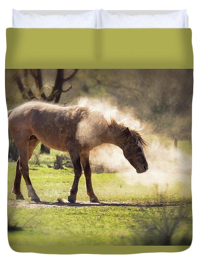 Wild Horse Duvet Cover featuring the photograph A Good Dust Bath by Saija Lehtonen