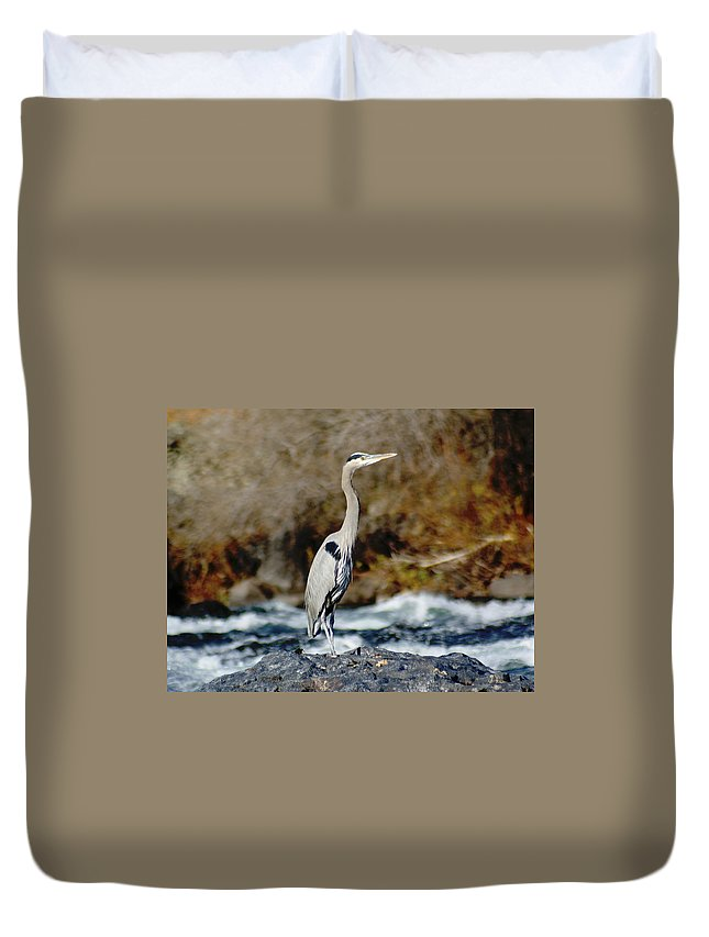 Birds Duvet Cover featuring the photograph A Great Blue Heron At The Spokane River 2 by Ben Upham III