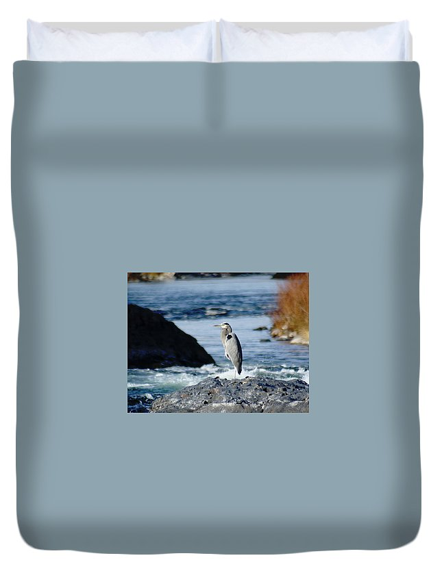 Birds Duvet Cover featuring the photograph A Great Blue Heron At The Spokane River by Ben Upham III