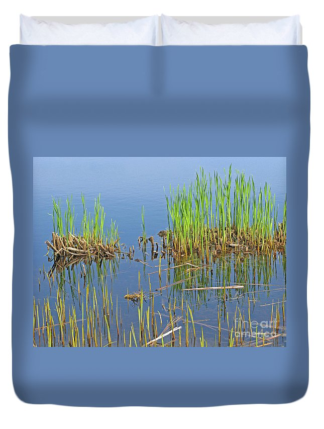 Spring Duvet Cover featuring the photograph A Greening Marshland by Ann Horn