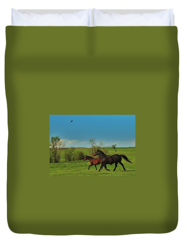 Hawk Duvet Cover featuring the photograph A Hawk And Horses In Kansas by Greg Rud