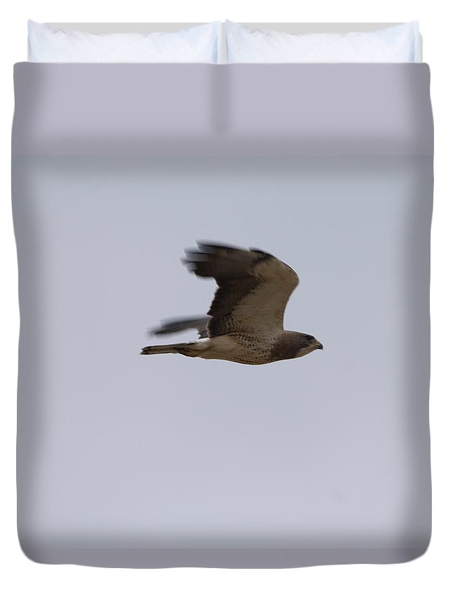 Photography Duvet Cover featuring the photograph A Hawk Near The Charles M. Russell by Joel Sartore