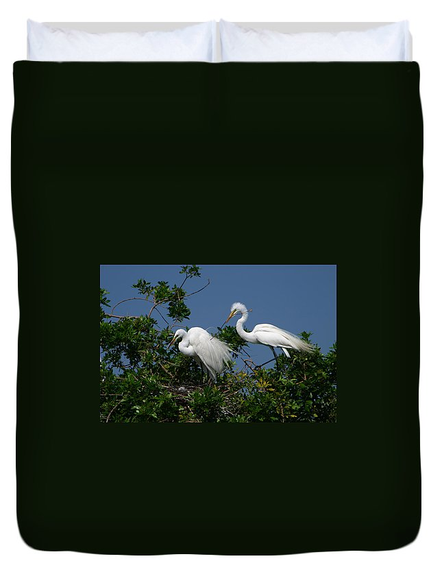 Great White Egret Bird Feathers Animal Wildlife Florida Photograph Photography Duvet Cover featuring the photograph A Helping Beak by Shari Jardina