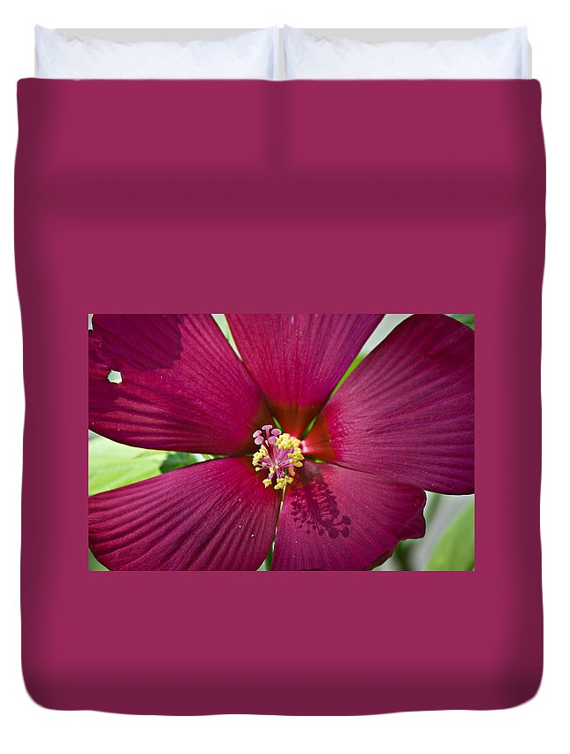 Hibiscus Duvet Cover featuring the photograph A Hole In One by Teresa Mucha