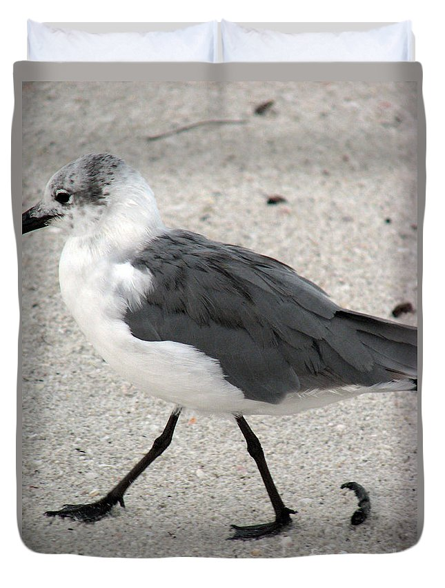 Seagulls Duvet Cover featuring the photograph A Late Summer Walk by Amanda Barcon