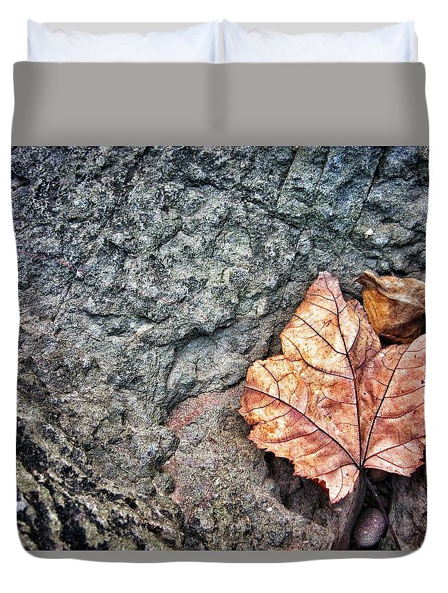 Leaves Duvet Cover featuring the photograph A Leaf's Bow by Scott Wendt Tom Wierciak