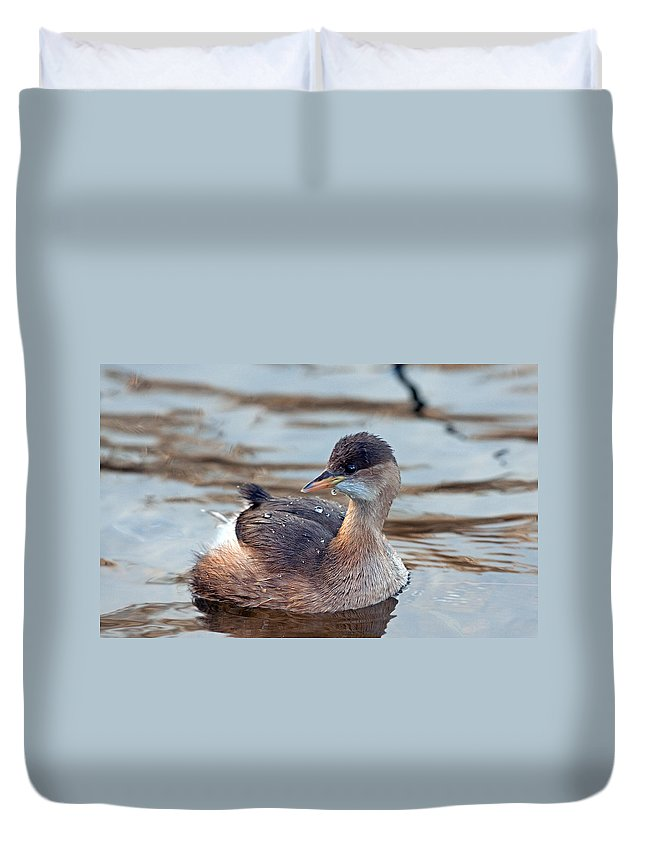 Little Grebe Duvet Cover featuring the photograph A Little Grebe by Bob Kemp
