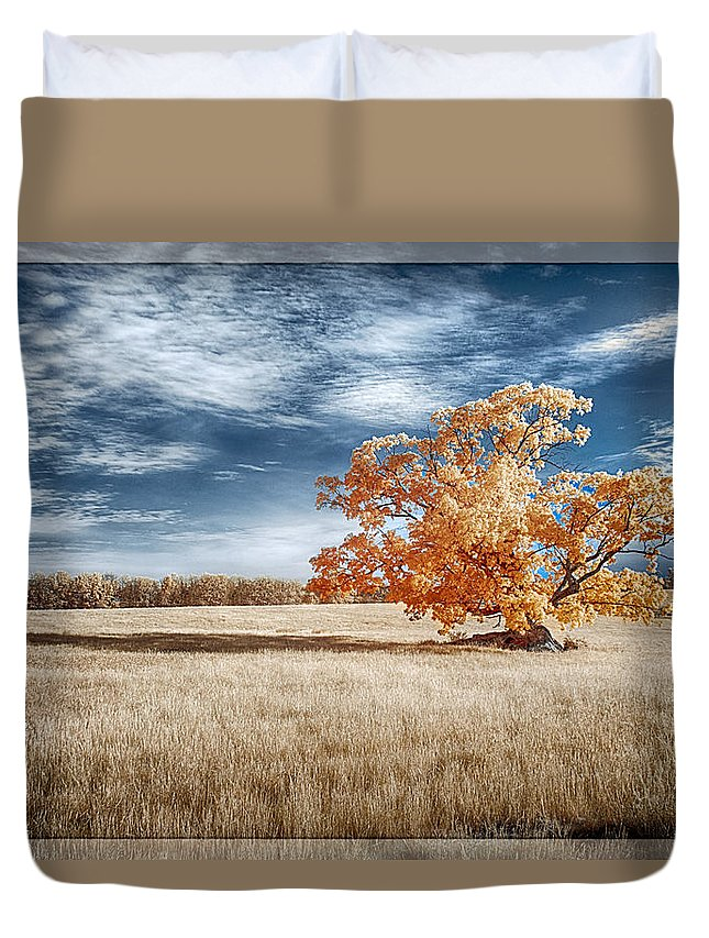 Tree Duvet Cover featuring the photograph A Lone Tree by Dan Urban
