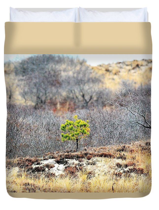 Lonely Duvet Cover featuring the photograph A Lonely Pine Tree by Jo-Ann Matthews