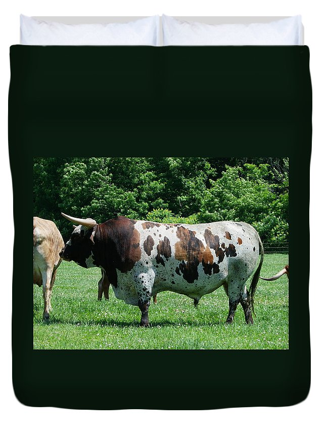 Animals Duvet Cover featuring the photograph A Lot of Bull by Peggy King