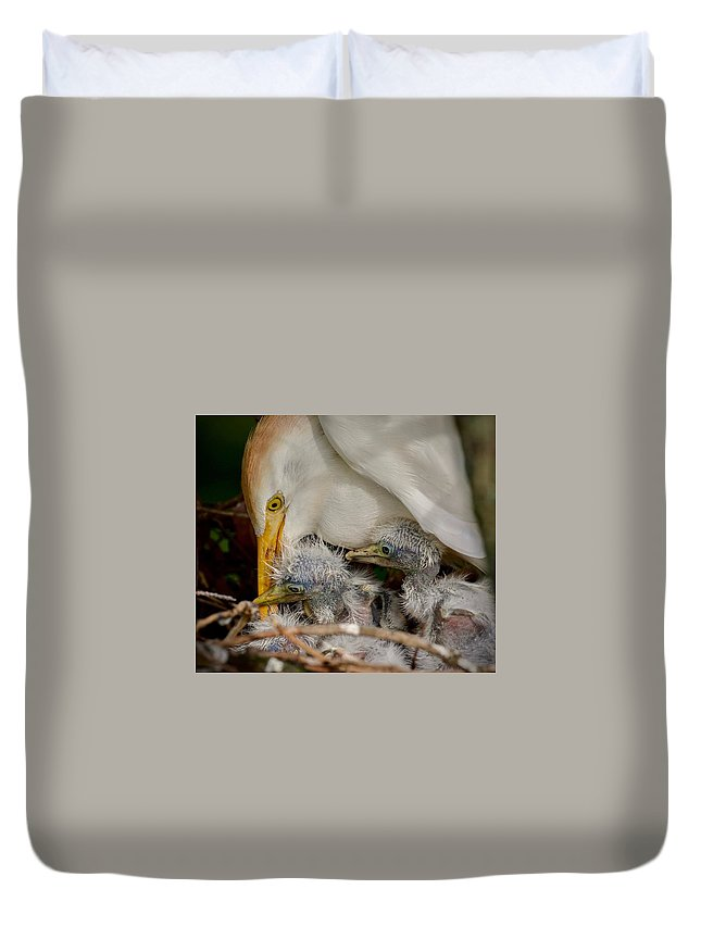 Bird Duvet Cover featuring the photograph A Mothers Love by Gary Oliver