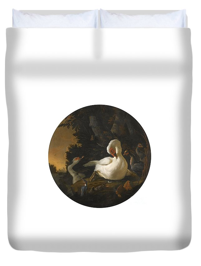 Abraham Bisschop Duvet Cover featuring the painting A Mute Swan A Goose And Other Fowl by Celestial Images