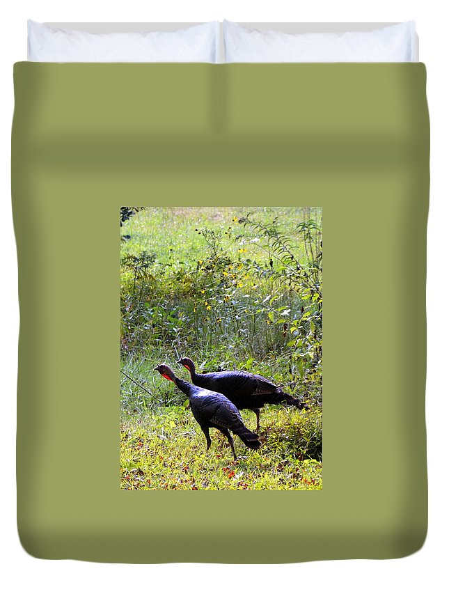 Wild Turkeys Duvet Cover featuring the photograph A Pair Of Wild Turkeys by Carla Parris