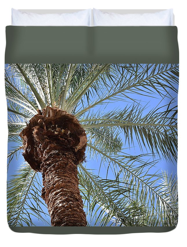Palm Duvet Cover featuring the photograph A Palm In The Sky by Jason Bogar