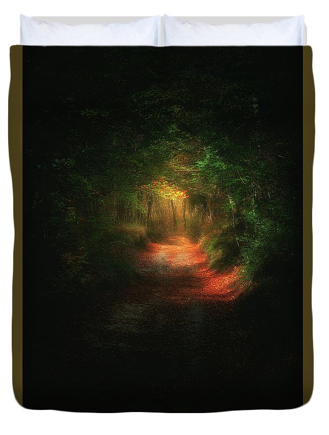 Path Duvet Cover featuring the photograph A Path In The Dark by Mikel Martinez de Osaba