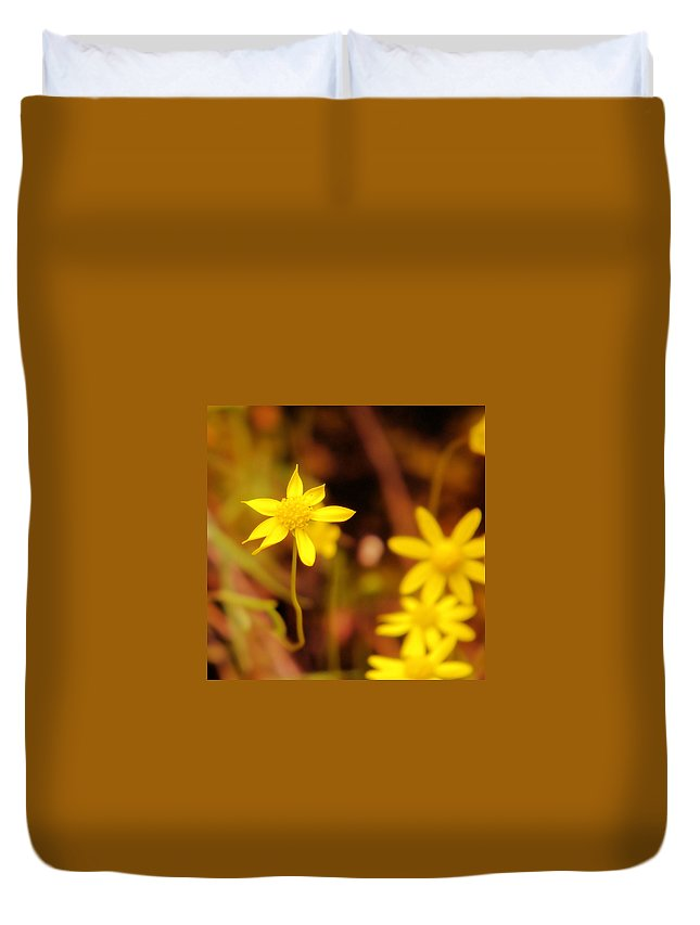 Wild Flowers Duvet Cover featuring the photograph A Perky Yellow Flower by Jeff Swan