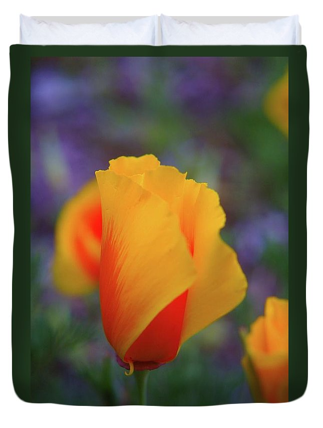 Poppies Duvet Cover featuring the photograph A Poppy Furled by Jeff Swan