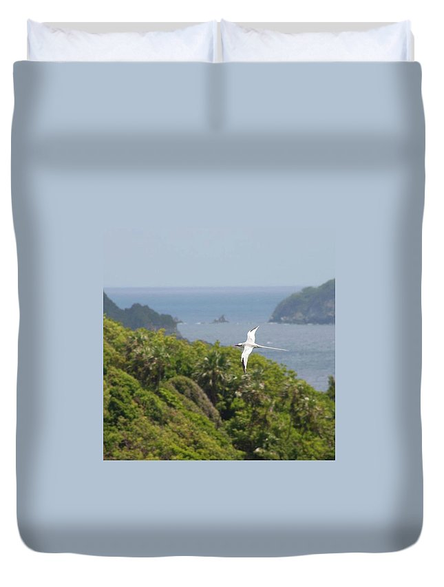 Tropicbird Duvet Cover featuring the photograph A Red-billed Tropicbird (phaethon by John Edwards
