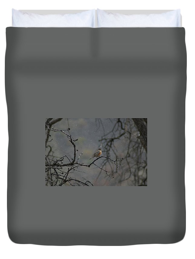 Fowl Duvet Cover featuring the photograph A Robin In Spring Snowfall by Jeff Swan