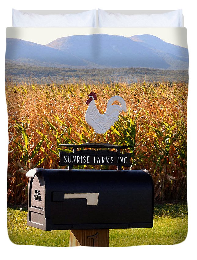 Rooster Mailbox Duvet Cover featuring the painting A Rooster Above A Mailbox 1 by Jeelan Clark