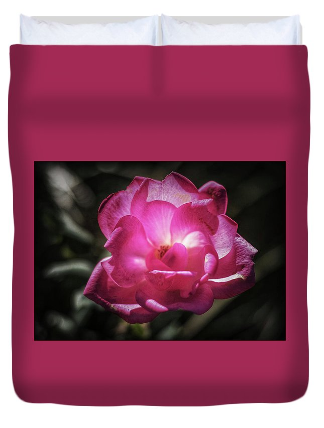 Rose Duvet Cover featuring the photograph A Rose For You by Mike Dunn