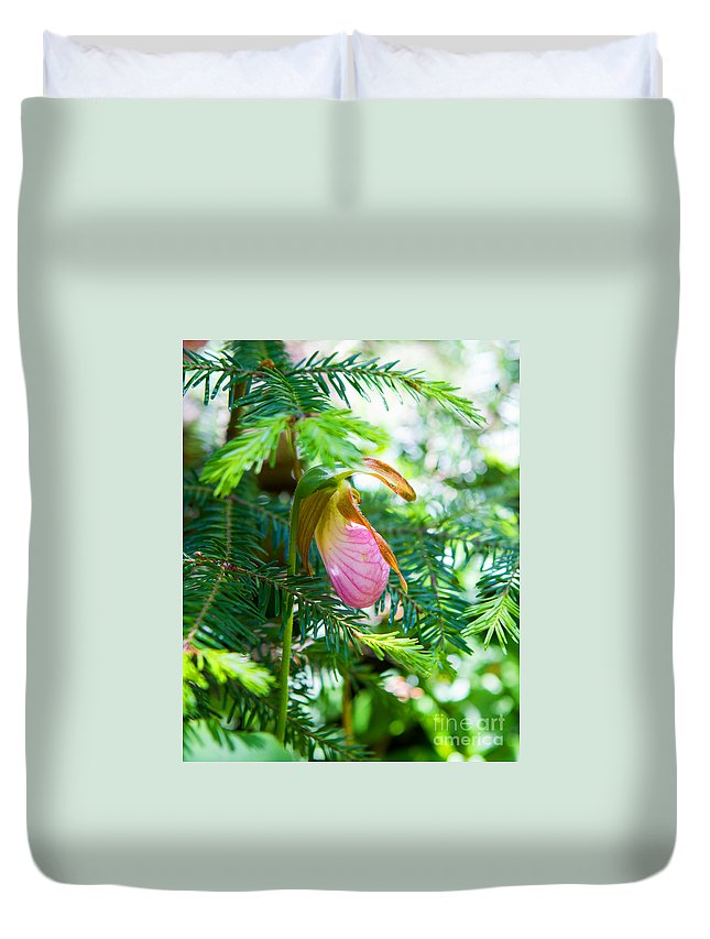 Lady Slipper Duvet Cover featuring the photograph A Simple Slipper by Lloyd Alexander