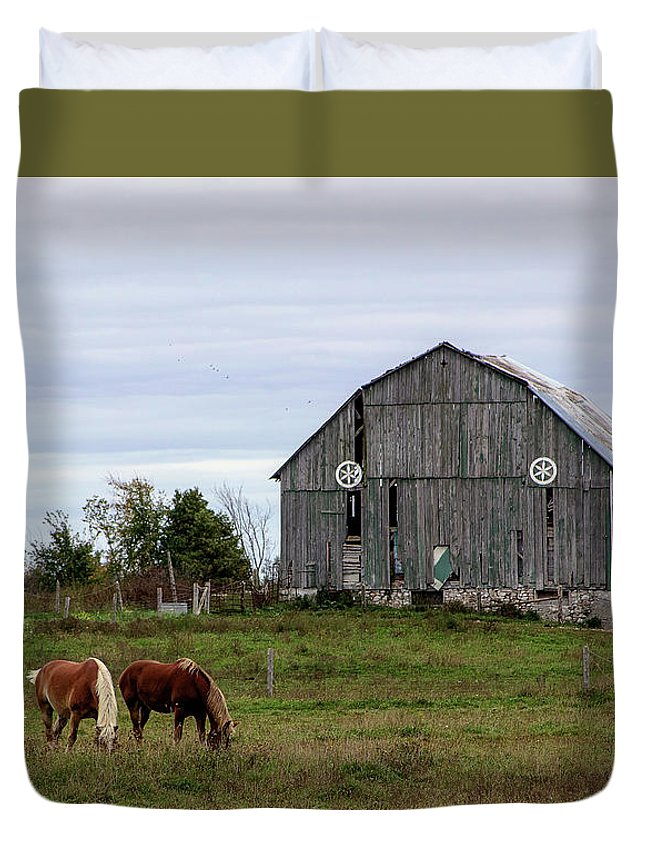 Horses Duvet Cover featuring the photograph A Simple Story by Anne D