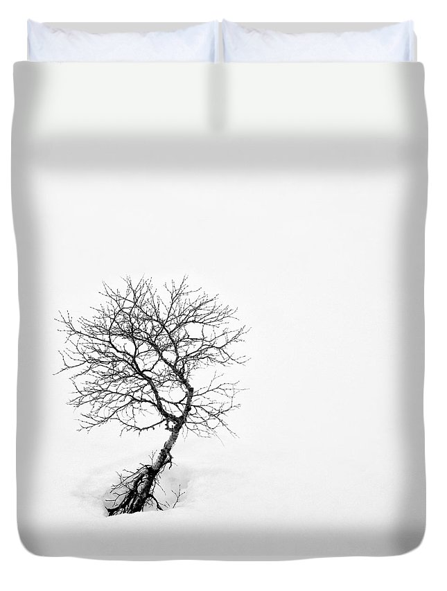 One Tree Duvet Cover featuring the photograph A Simple Tree by Dave Bowman