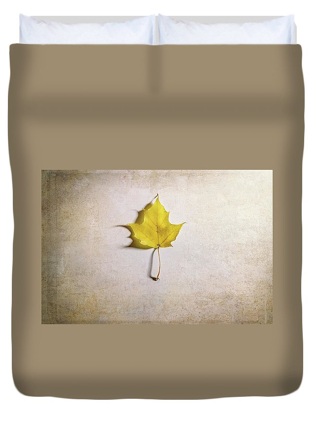 Maple Leaf Duvet Cover featuring the photograph A Single Yellow Maple Leaf by Scott Norris