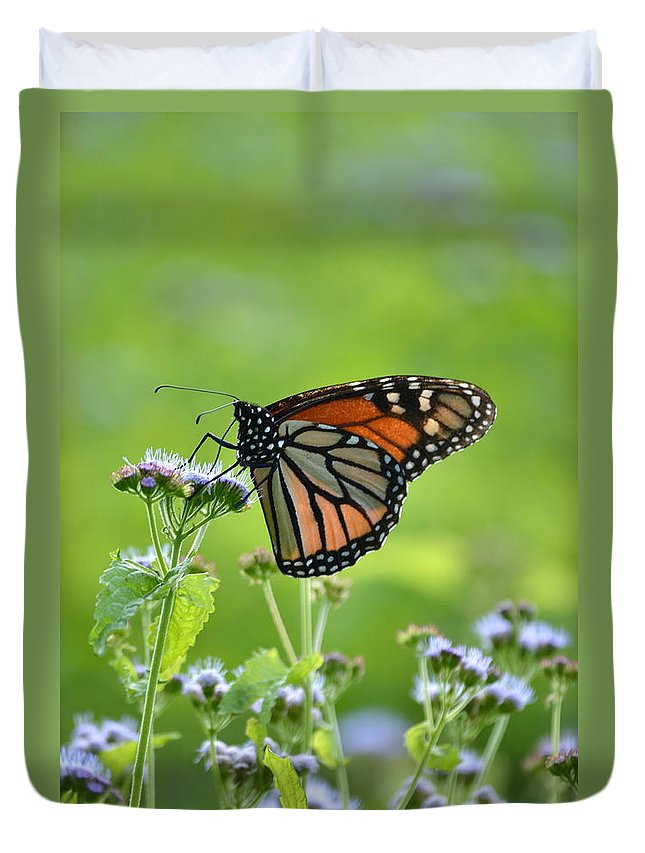 Monarch Duvet Cover featuring the photograph A Sip Of Mist by JD Grimes