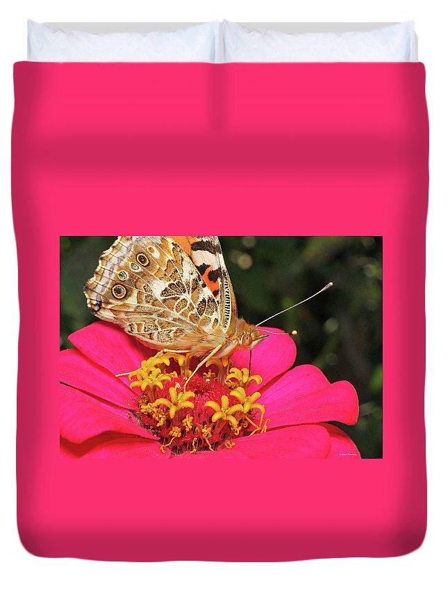 Cazenovia Butterfly Zinnia Duvet Cover featuring the photograph A Sip Of Zinnia by John Kennedy