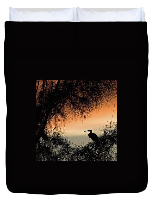 Egret Duvet Cover featuring the photograph A Snowy Egret (egretta Thula) Settling by John Edwards