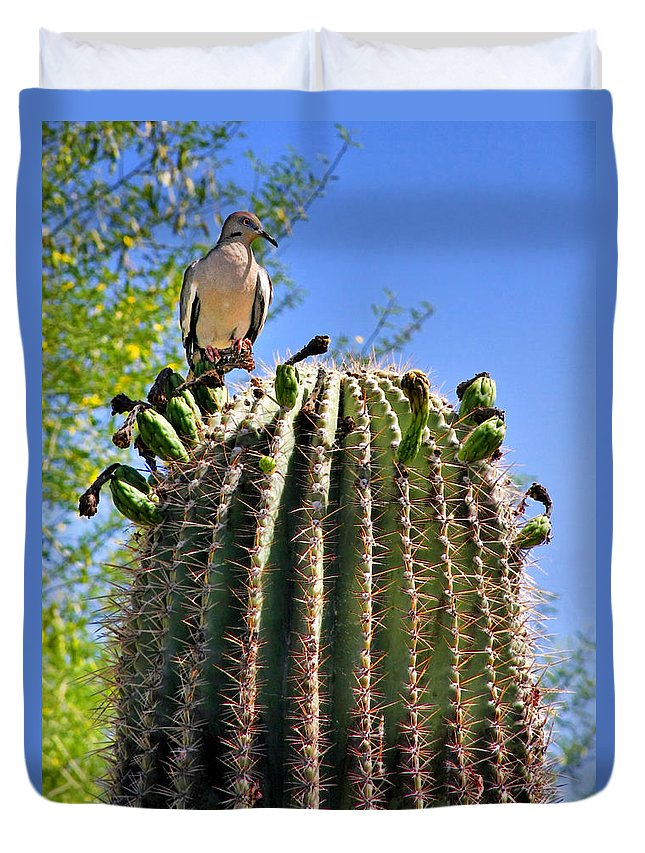 White Winged Dove Duvet Cover featuring the photograph A Spiky Home by Alexandra Till