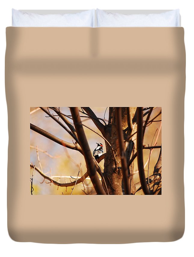 Woodpecker Duvet Cover featuring the photograph A Spot Of Red by Lori Tambakis