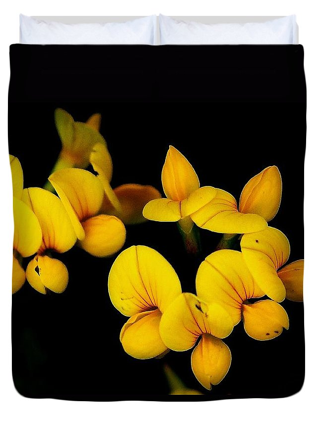 Digital Photography Duvet Cover featuring the photograph A study in yellow by David Lane