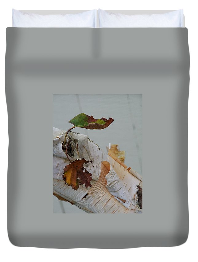 Birch Duvet Cover featuring the photograph A Touch Of Fall by Gale Cochran-Smith