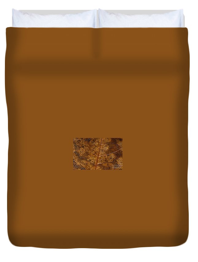 Leaves Duvet Cover featuring the photograph A Touch Of Fall by Richard Rizzo