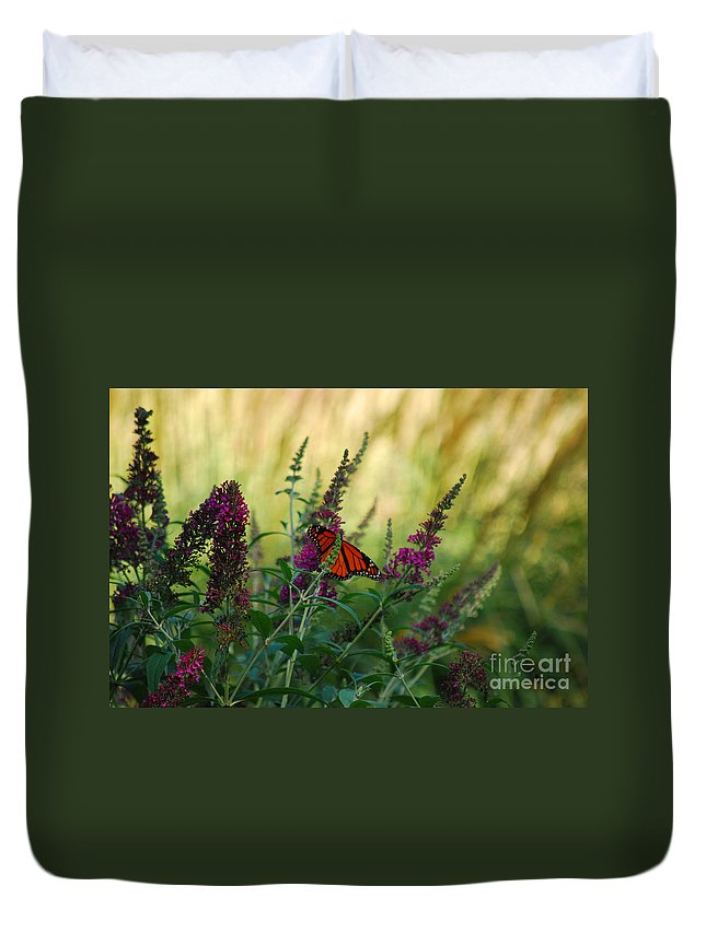 Monarch Duvet Cover featuring the photograph A Touch Of Orange by Lori Tambakis