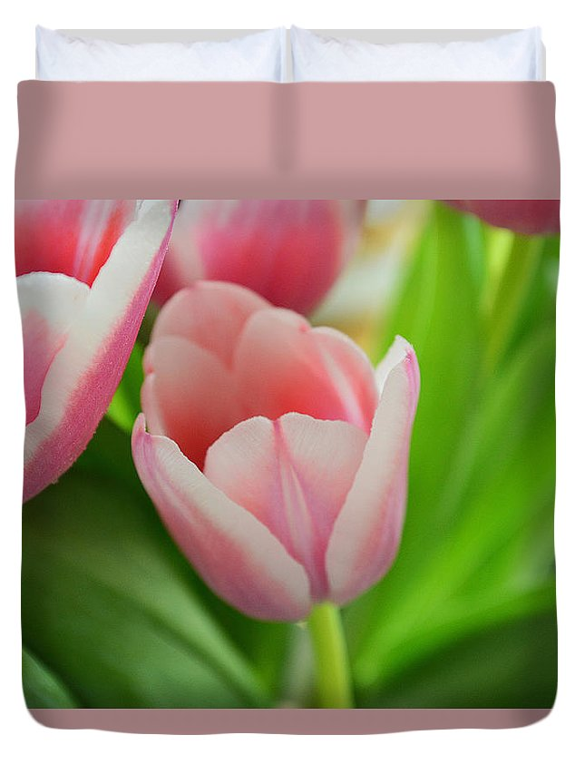 Flower Duvet Cover featuring the photograph A Touch Of Spring by Felicia Tica