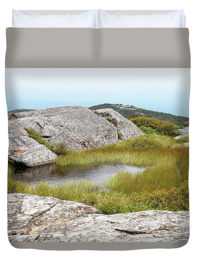 Vernal Duvet Cover featuring the photograph A Vernal Pool Atop A Subalpine Granite Balds by Maili Page
